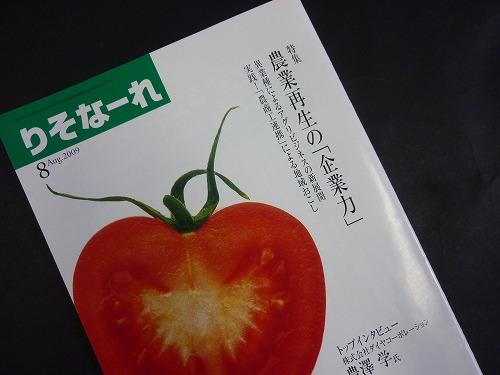 P1050608.jpg