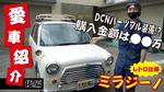 フレクリのNEW動画