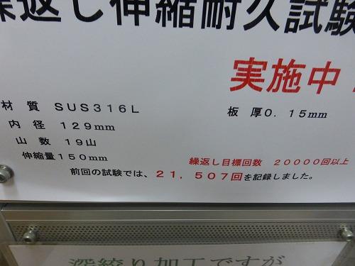 P1020280.jpg